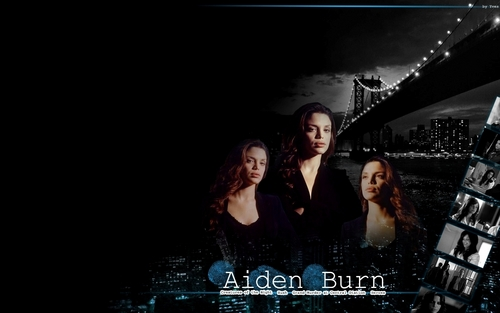 CSI:NY wallpaper possibly with a sign titled aiden burn