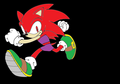 amanda the hedgehog - random-sonic-girls-and-boys photo