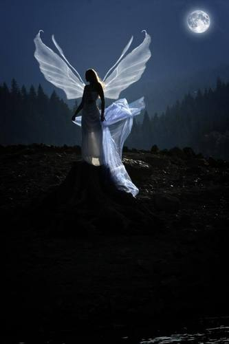 Angels wallpaper entitled beautiful moon light angel