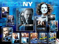csi new york پیپر وال