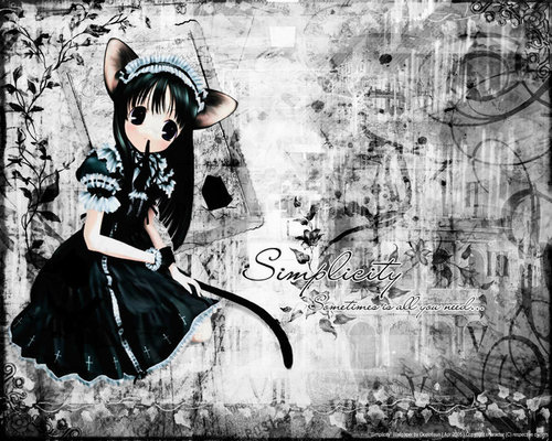 fanpop anime wallpaper possibly containing a jalan, street called cute cat