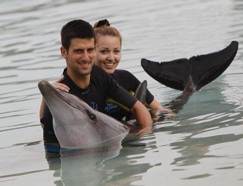djokovic dolphins