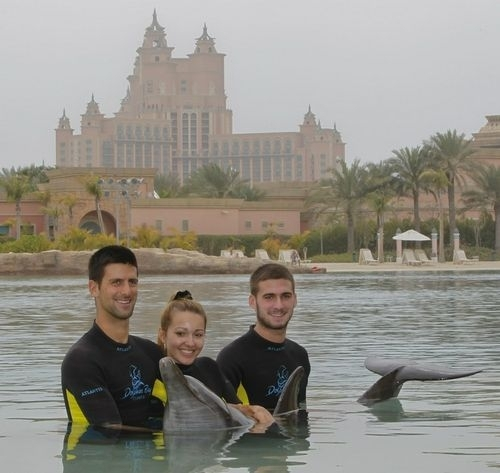 djokovic ristic dolphins