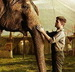 icons - water-for-elephants icon
