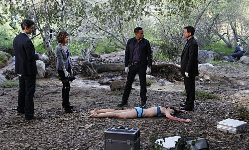 CSI:NY پیپر وال probably with a mulch کے, mulch titled promo 7x20