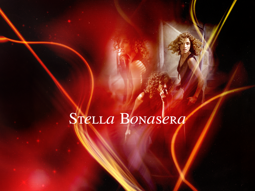CSI:NY پیپر وال entitled stella bonasera