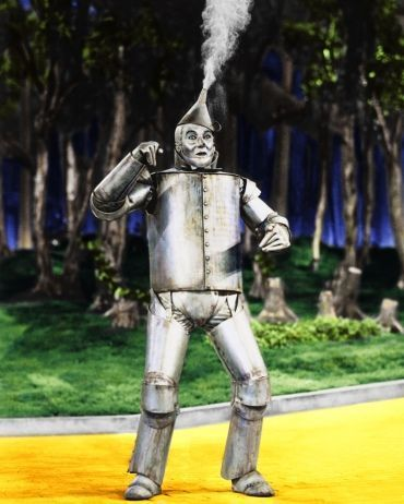 Tin Man - the-wizard-of-oz Photo