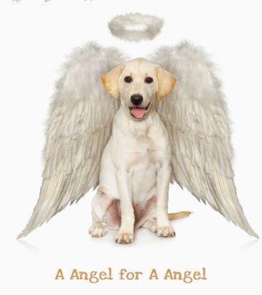 A Angel for A Angel...You Rachel