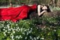 daydreaming - And the princess lay to sleep ... screencap