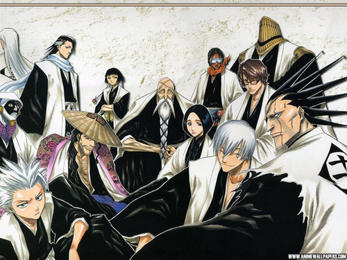 Bleach Wallpaper!