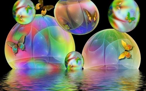 con bướm, bướm Bubbles
