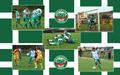 soccer - CS Sanatatea Cluj wallpaper