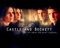 Castle and Beckett mini Wallpaper