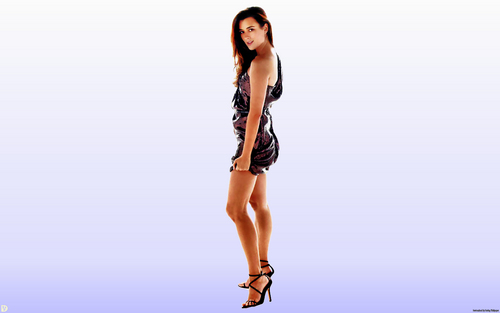 NCIS wallpaper called Cote De Pablo (Ziva David) Wallpaper
