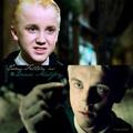 Draco 팬 Art