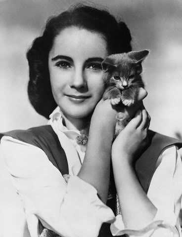 Elizabeth Taylor karatasi la kupamba ukuta possibly with a kitten and a cat called Elizabeth Taylor