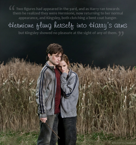 Harry and Hermione wallpaper containing a grainfield and cultivated rice called Harry and Hermione♥