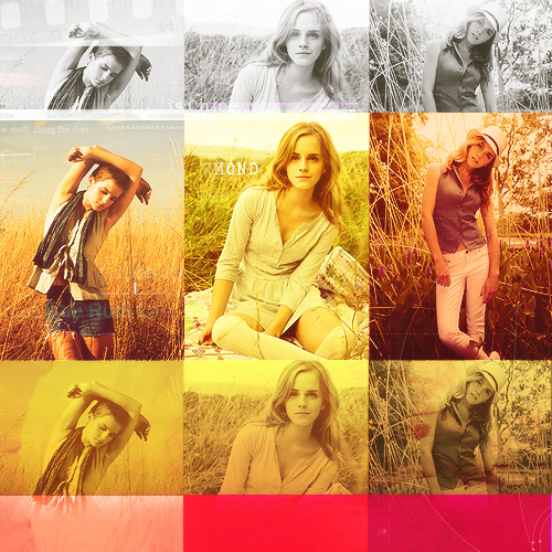 Hermione fã Art