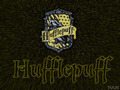 Hufflepuff Stuff :D