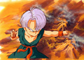 Kid Trunks - trunks photo