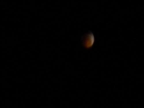 Lunar Eclipse of December 2010