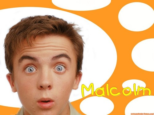 Malcolm In the Middle wallpaper containing a portrait and a venn diagram entitled Malcolm