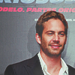 Pau Walker - paul-walker icon