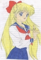 Sailor V XD