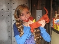 Sam biting a weiner dog - samantha-puckett photo