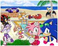 Sonic and friends at the beach