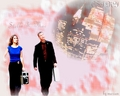Stella&Mac {CSI NY} - mac-and-stella wallpaper