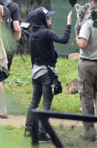 Taronga Zoo, Sydney AU