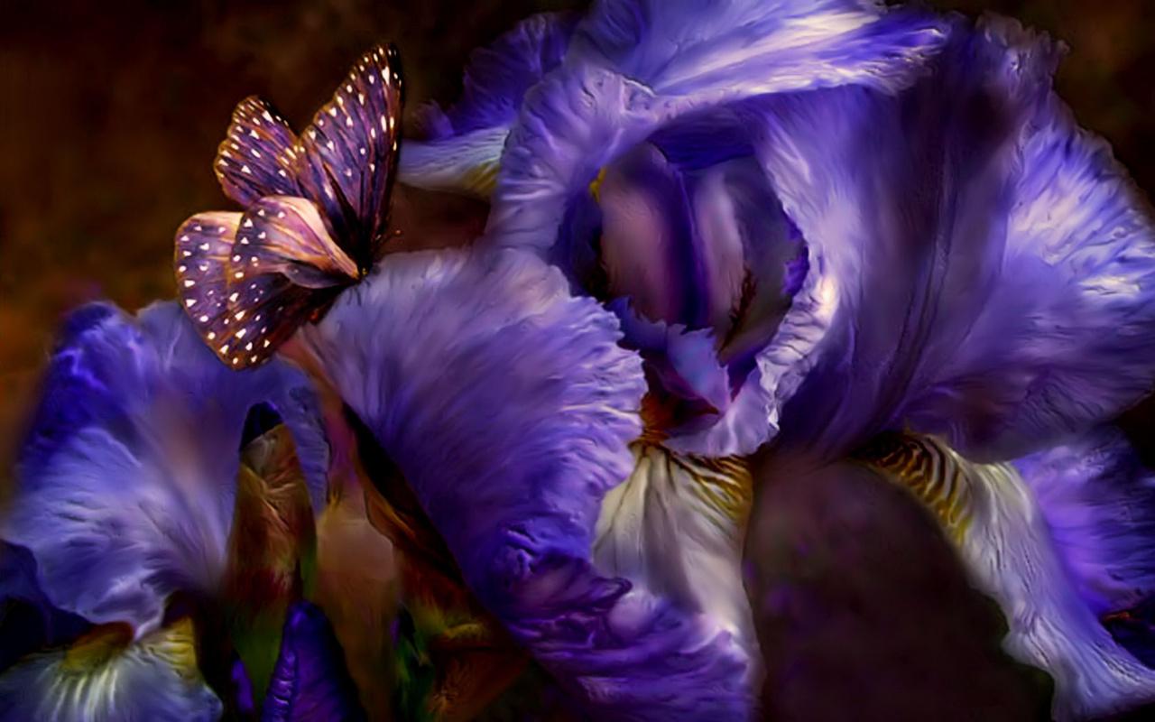 The Purple papillon