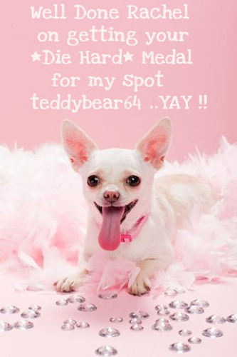 Well Done Rachel on getting your Die Hard Medal for my spot teddybear64..YAY !!