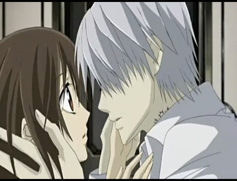Yuki and Zero - Vampire Knight - Yuki + Zero Image ...