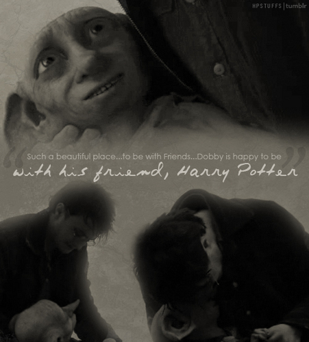 dobby is happy to be with his friend harry potter
