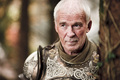 Barristan - game-of-thrones photo