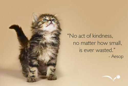 one can conquer the world with kindness