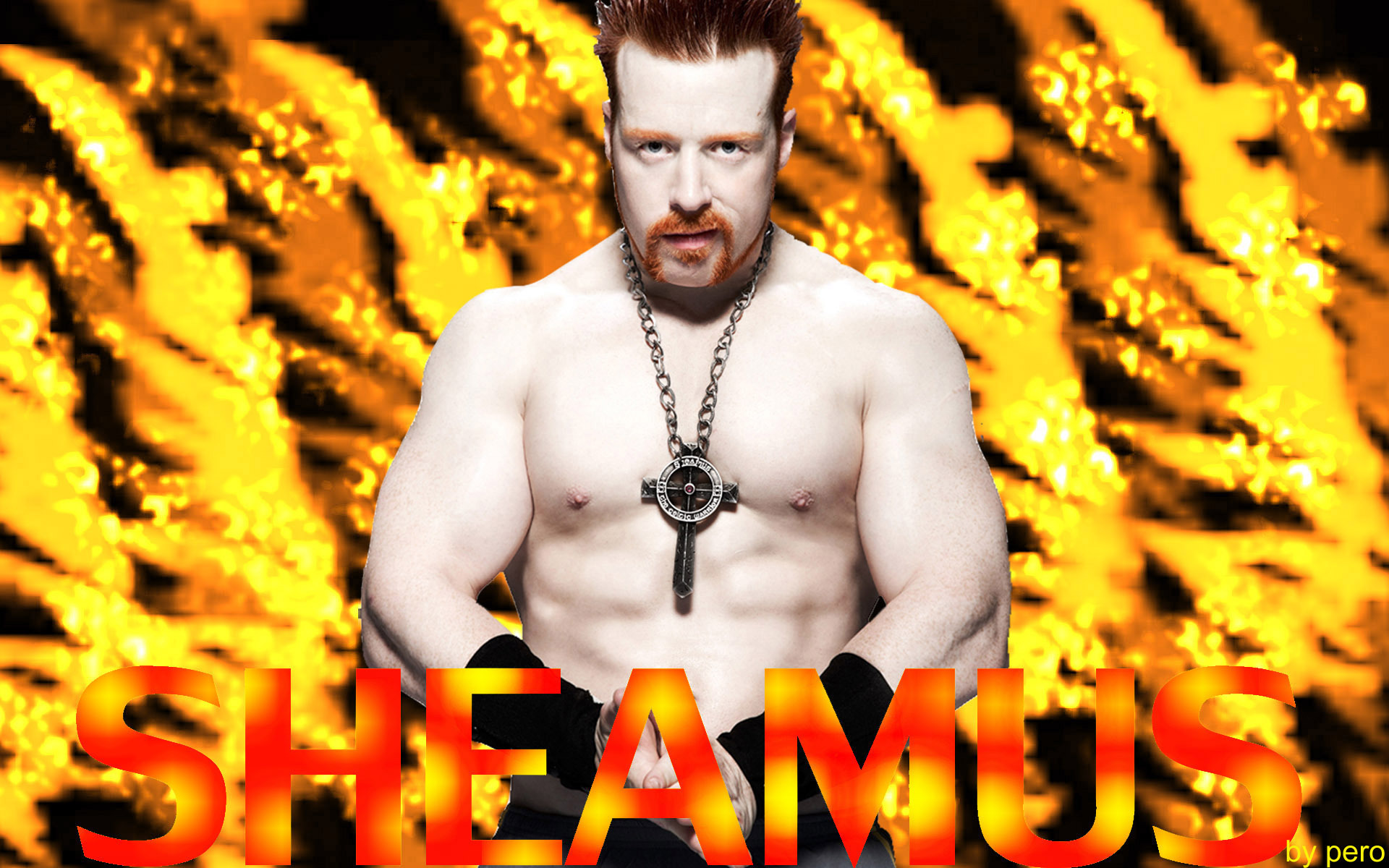 http://images4.fanpop.com/image/photos/20500000/sheamus-sheamus-20516671-1920-1200.jpg