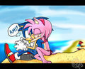sonic amy on the plage