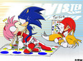 sonic and amy in the game - sonamy photo