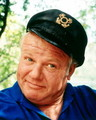 Alan Hale Jr as The Skipper