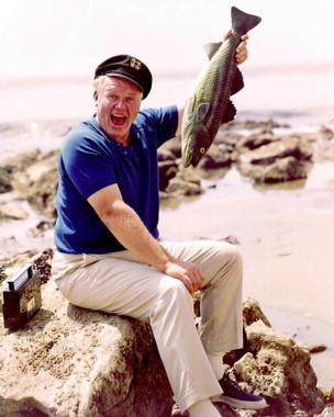 Alan Hale Jr as the Skipper