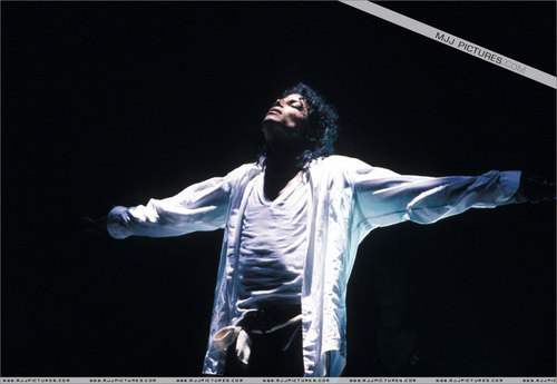 Bad Tour Pictures