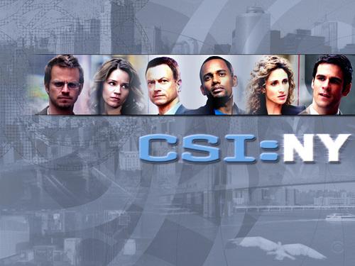 CSI - Scena del crimine New York
