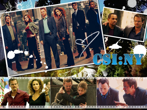 CSI New York wallpapers