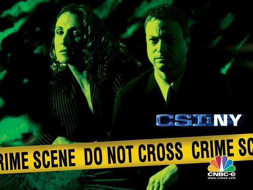CSI Ny Stella and mac