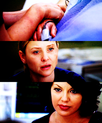 Callie and Arizona (music episode)