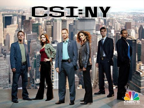 सी एस आइ New York danny and lindsay