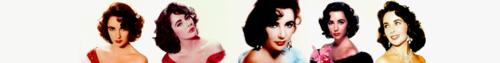 Elizabeth Taylor - Banner